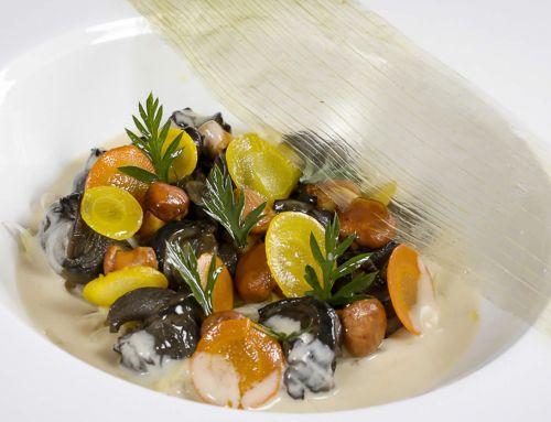 Escargots de notre région, fondue de poireaux au thym, sauce au vin blanc,petites girolles aux herbes